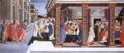 incidents in the life of Saint Zenobius Botticelli