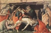 Lament fro Christ Dead,with st jerome,St Paul and St Peter (mk36) Botticelli